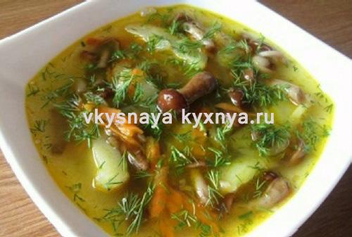 Рецепт грибного супа из свежих опят