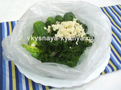 Огурцы в полиэтиленовом пакете с укропом и чесноком