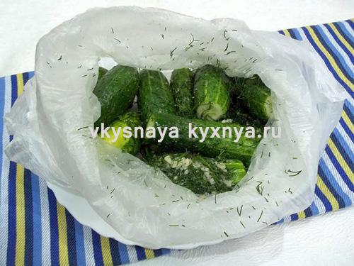 Огурцы в полиэтиленовом пакете с о специями