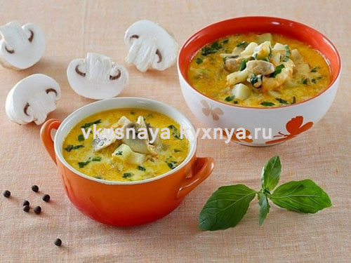 Сырный суп с шампиньонами и курицей: рецепт с плавленным сыром