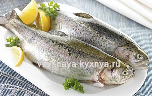 Форель: польза, производство рыбы, сроки хранения